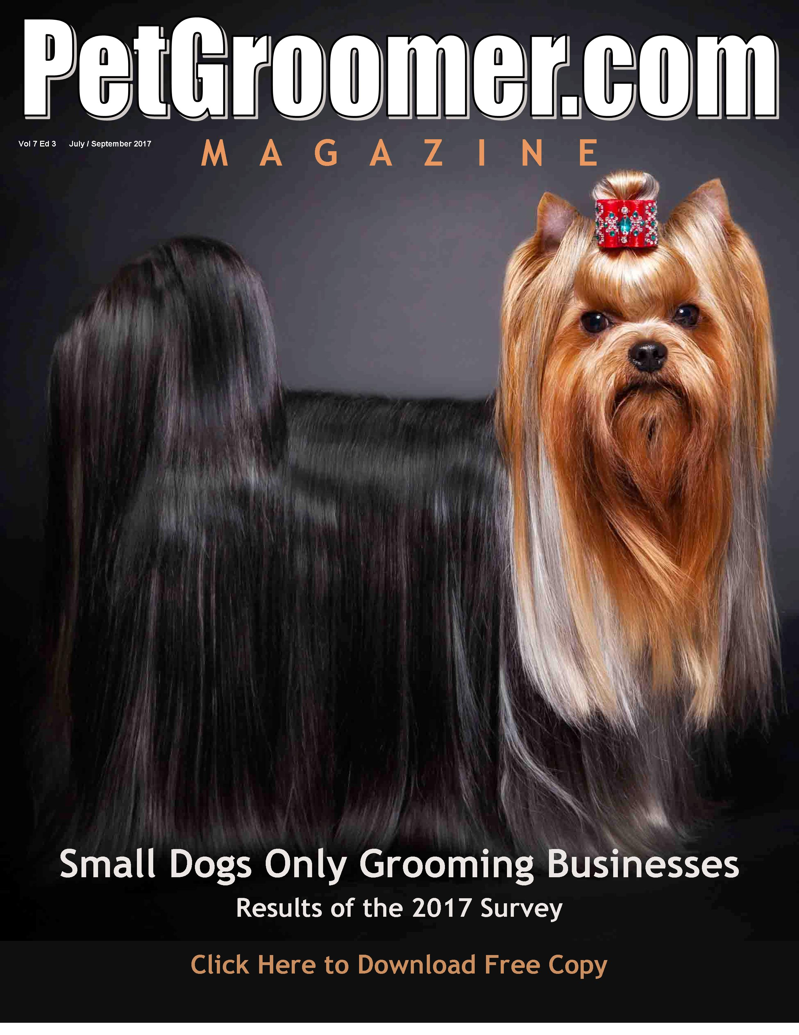 Yorkie haircuts and yorkie grooming resources rachael edwards -  Professional Reading For Dog And Cat Stylists Groomers And Career Seekers