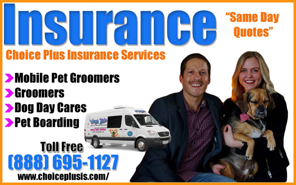Choice Plus Insurance for Groomers